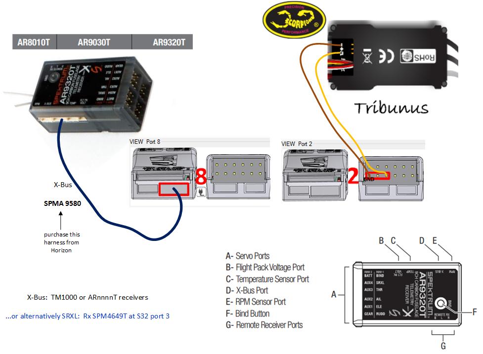 Tribunus-SPEKTRUM-X-Bus__ARnnnnT